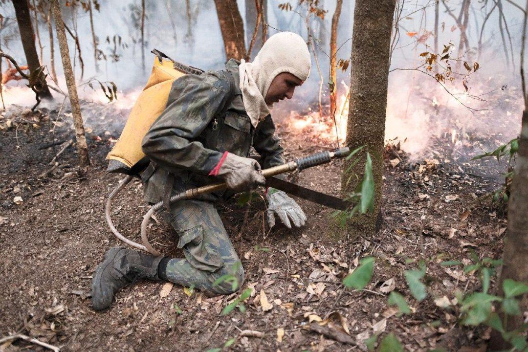 Brigadistas e voluntários: entre o fogo e o descaso dos governos