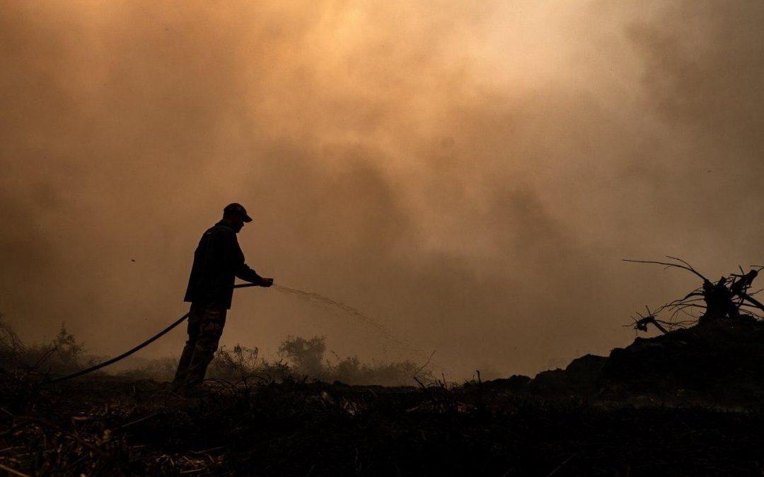 Câmara Federal pede mais recursos, militares e criação de Gabinete de Crise para combate a incêndios