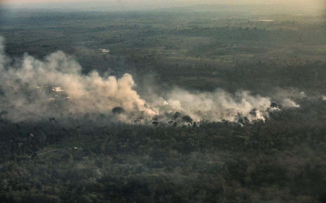 Amazonas registra maior foco de queimadas desde início da contagem, aponta Inpe