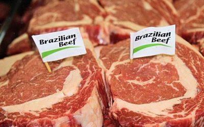 Itália é o principal destino da carne bovina do Mato Grosso, líder em desmatamento