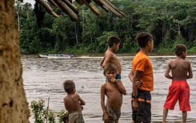 Garimpeiros atacam novamente comunidade Yanomami e matam cachorro como forma de intimidação