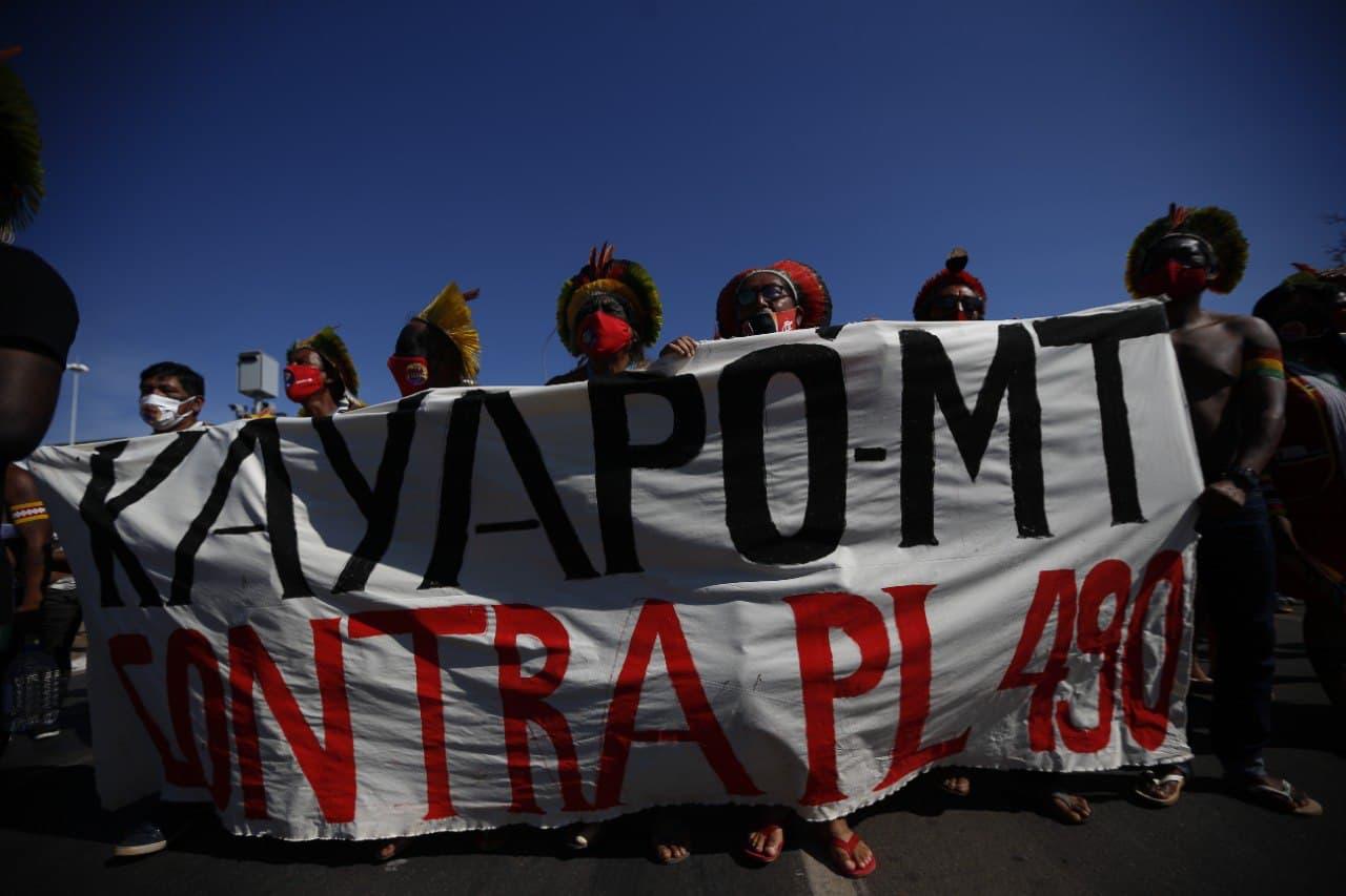 Foto_ Adriano Machado _ Greenpeace(1)
