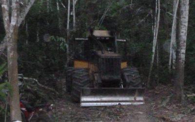 Dossiê da Apiwtxa revela obra de estrada ilegal que abre caminho para invasores