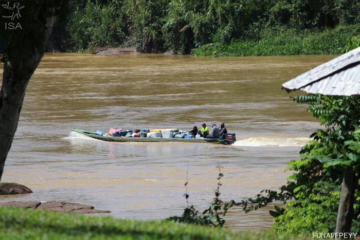 Associação Yanomami denuncia aumento de invasores e maquinário na região de Palimi ú