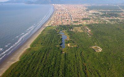 Mata Atlântica: Baixa cobertura vegetal pode afetar abastecimento de água nas grandes cidades