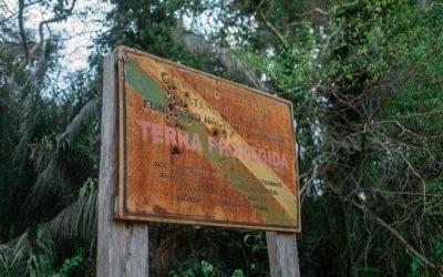 Indígenas do povo Uru-Eu-Wau-Wau são pressionados por extração ilegal de madeira