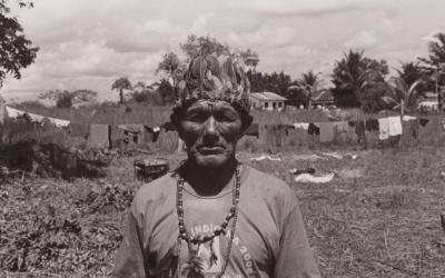 Extermínio: 539 indígenas Guarani Kaiowá foram assassinados em 16 anos